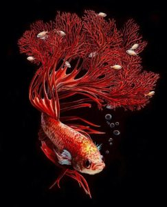 Hyperrealistic Painting of a Red Fish by Lisa Ericson