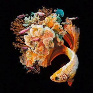 lukisan surealis ikan