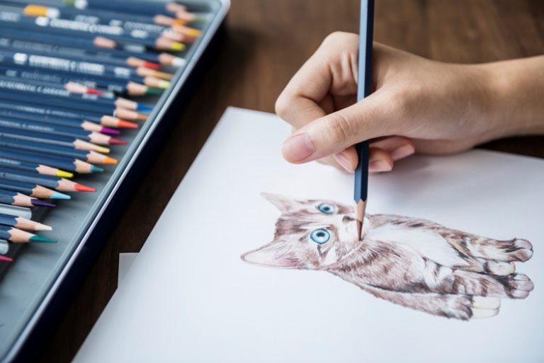 90 Koleksi Cara Membuat Gambar Hewan Dan Tumbuhan Terbaru