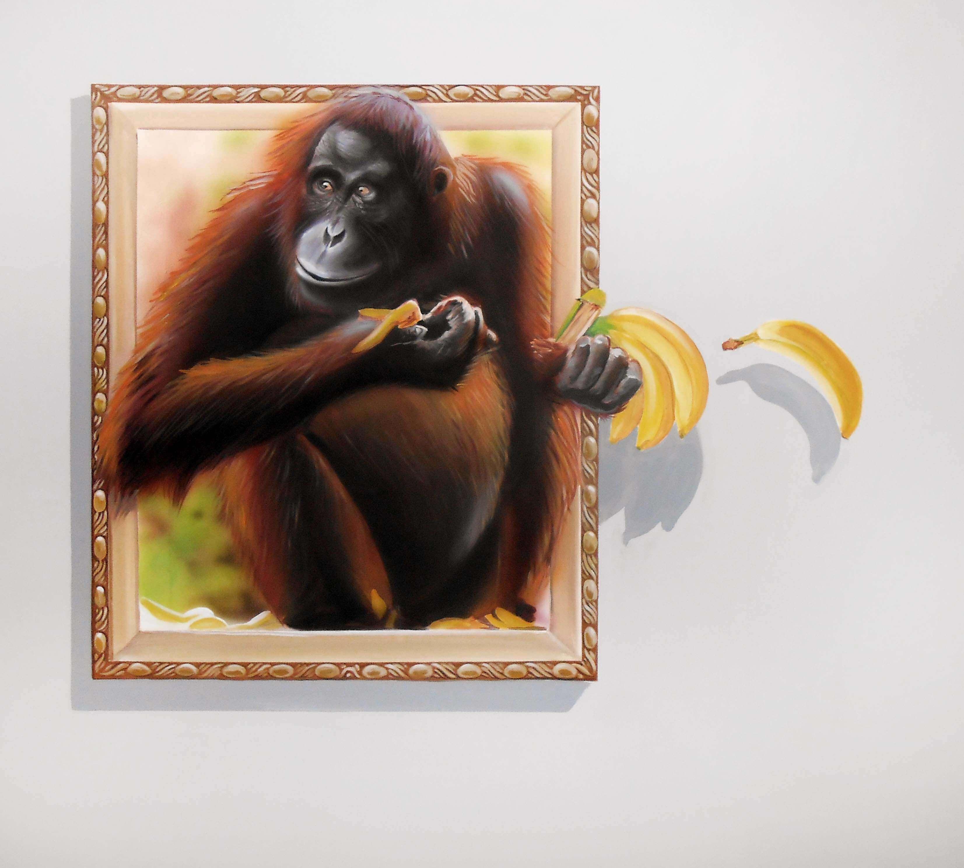 museum trick art