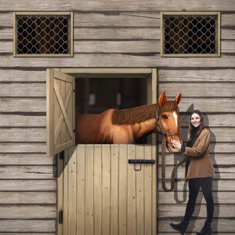 3D Trick Art Kuda Poni